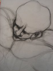 "Aditi Raychoudhury. Head Study For Primitive Series: ""Dance, Little Monkey, Dance"". 2008. Charcoal on Tracing Paper. 14"" X 20""."